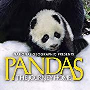 Pandas: The Journey Home with baby panda above title