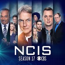 NCIS characters within vertical borders